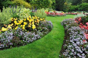 new-garden-beds