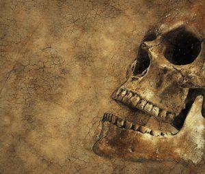 skull-2106816_1280