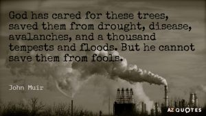 Quotation-John-Muir-God-has-cared-for-these-trees-saved-them-from-drought-20-84-08